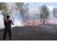 Anız yangınında 40 dönüm arazi yandı