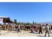 Erzincan'da kurbanlık hayvan satış yerleri denetlendi