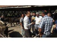Başkan Kavaklıgil, hayvan pazarında incelemelerde bulundu