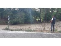 Nallıhan'da tarlaları ve yolları sel bastı