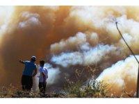 """Başkan Gürün: """"Milas ve Mumcular'daki yangınlarda sabotaj ihtimali araştırılmalı"""""""