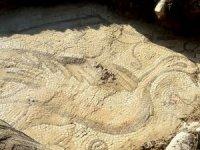 Adıyaman'da kuş figürlü mozaik bulundu