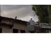 Çatıda mahsur kalan köpeği itfaiye kurtardı
