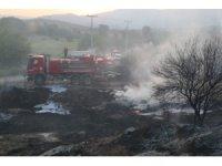Muğla Yatağan'da yangın, ziraat arazisinde çıkan yangında maddi hasar oluştu