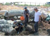 Soli Pompeiopolis 2019 kazı çalışmaları sona erdi