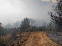 Kütahya'daki ikinci orman yangını sürüyor