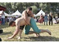 Hasat festivalinde renkli görüntüler