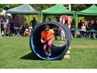 Çocuklar kurulan parkurlarla survivor heyecanı yaşadı