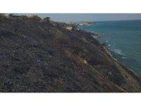 Tekirdağ'da ormanlık alanda yangın