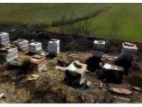 Tekirdağ'da 40 sandık arı kovanı yandı