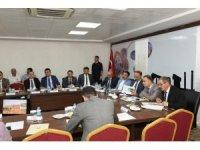 Türkiye'nin en büyük ağaçlandırma kampanyası başlıyor