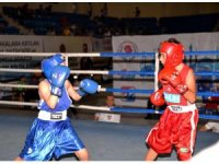 Türkiye Ferdi Boks Şampiyonası Bilecik'te