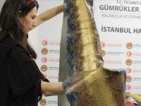 Piyasa değeri 320 bin lira... İstanbul Havalimanı'nda ele geçirildi