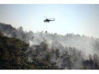 Tarım ve Orman Bakanlığı bugün çıkan yangınlarla ilgili açıklama yaptı