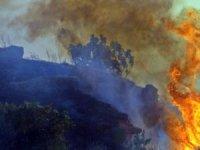 Antalya'da korkutan yangın! Mahalleli sokağa döküldü