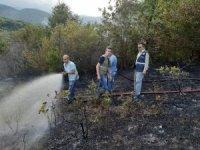 Türkeli'de çıkan yangın ormanlık alana sıçramadan söndürüldü