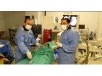 Hitit Üniversitesi Tıp Fakültesi'nden bir ilk daha