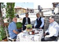 Ankara Kalesi'nin çınarları