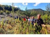 Dağcılardan doğa yürüyüşü