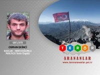 Siirt'te PKK'ya ağır darbe... Gri listedeki terörist öldürüldü!