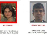Tunceli'de PKK operasyonu... Başına 4 milyon TL ödül konulan terörist öldürüldü