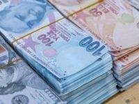 Yeni kurulan idarelere 114,7 milyon liralık bütçe