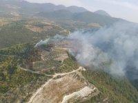 Hatay'da 2 hektar orman ve makilik alan yandı