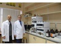 Selçuk Üniversitesi, doğal kaynaklı kanser ilacı adayı geliştiriyor