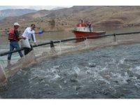 Denize kıyısı olmayan Sivas, dünyaya balık ihraç ediyor