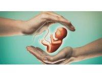 Tüp bebek tedavisi ile hayallerinizi gerçekleştirin