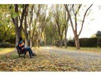 Botanik Park'ta kartpostallık sonbahar manzaraları
