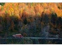 Yenice Ormanlarında kartpostallık görüntüler