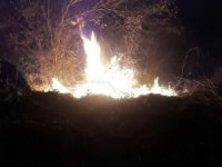 Düzce'deki orman yangınında 10 dönüm arazi küle döndü