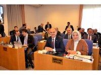 AK Parti Milletvekili Cemal Öztürk, çay ve fındık hakkında konuştu