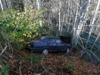 Ormanlık alana uçan otomobil ağaçlara takıldı: 3 yaralı