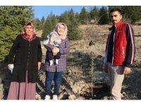 Nevşehir'de her doğan ve vefat eden kişi için fidan dikiliyor
