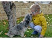 Miniklere hayvan sevgisi aşılandı