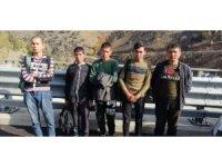 Niğde'de 5 düzensiz göçmen yakalandı