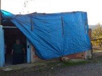 Harabe durumdaki evde yaşam mücadelesi