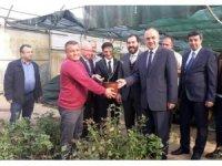 Yalova Valisi'nden çiçekçilere ziyaret
