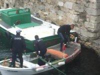 İç limana düşen kediyi zabıta kurtardı