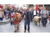 Yayla Şenliği geleneği yaşasın diye hayvanlarla caddelerde yürüdüler
