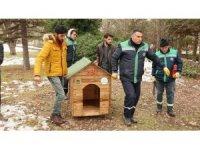 Odunpazarı Belediyesi 'Sokaktaki dostlar' için kulübe yaptı