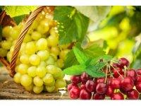 Yaş meyve sebze ve mamulleri UR-GE projeleriyle hedef pazarlara ihraç edilecek