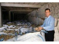 Patates üreticileri borç erteleme istiyor
