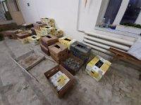 Türkiye'den Rusya'ya kaçırılan 3 bin adet kaplumbağa ele geçirildi
