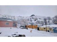 Tunceli'de kar 71 köy yolunu ulaşıma kapattı