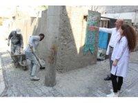 Şanlıurfa'da 65 yaş üstü 170 vatandaşın evi bakım ve onarımdan geçirildi