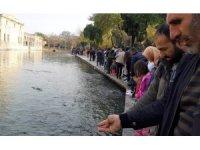 Güzel havayı fırsat bilen vatandaşlar Balıklıgöl'e akın etti