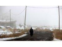 Erzurum'da yoğun sis hayatı olumsuz etkiliyor